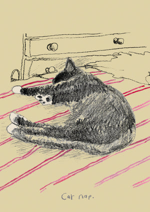 Cat Nap postcard, FP786