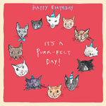 'Purr-fect Day' Birthday Card, Studio
