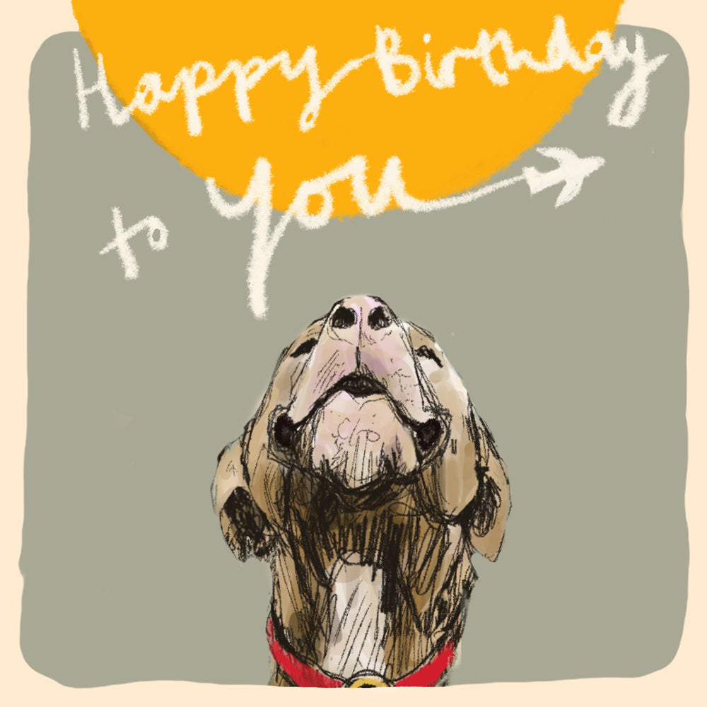 'Birthday Plane Dog' Birthday Card, Studio