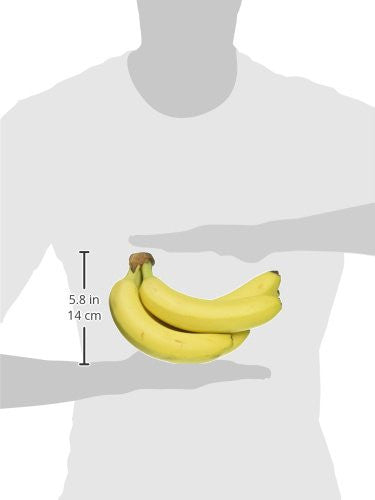 Bananas, 1 bunch (min. 5 ct.) Grocery Amazon- upcube