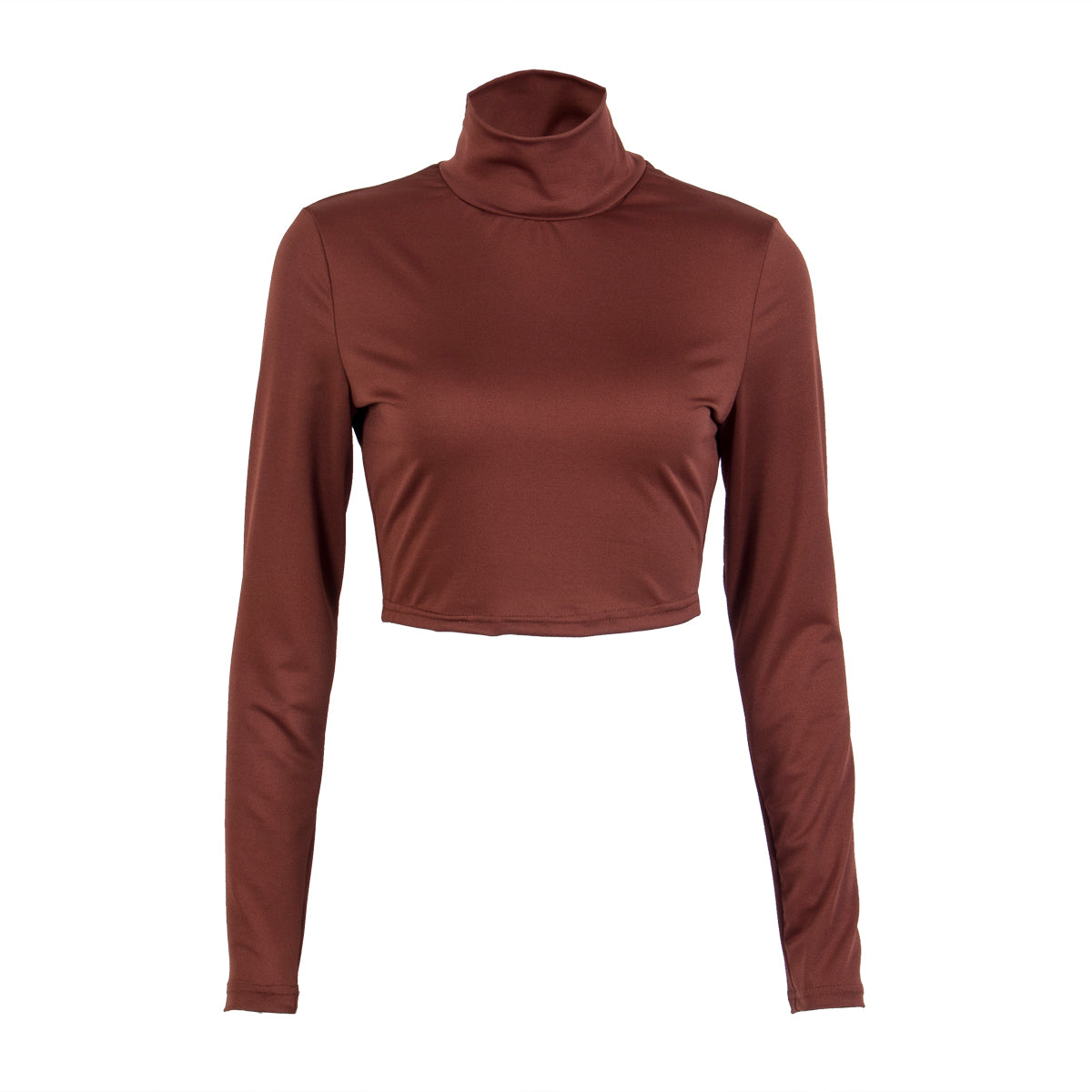 d810ca8f9b4 Trendy Women clothes Casual Long Sleeve Turtle Neck pullover solid Shirts  sexy Polyester Blouses one pieces