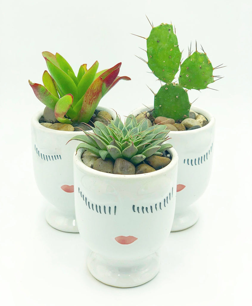 Celfie Pot - Small