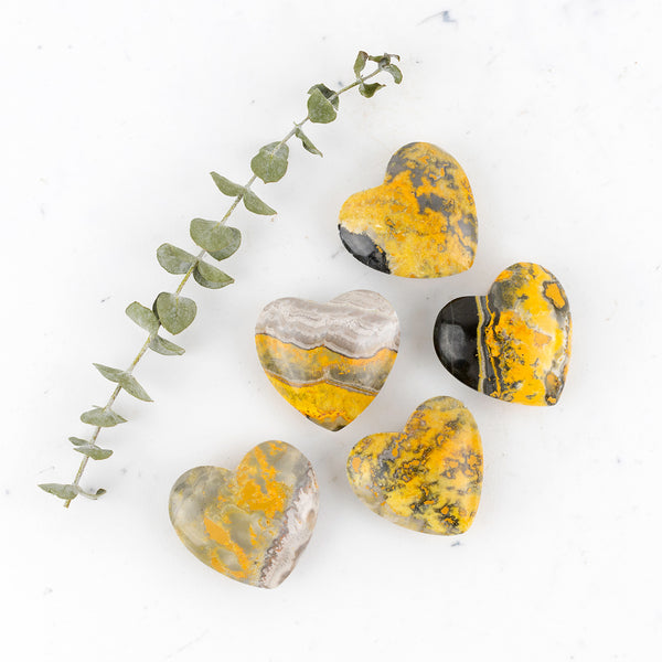 Bumble Bee Jasper Companion Hearts