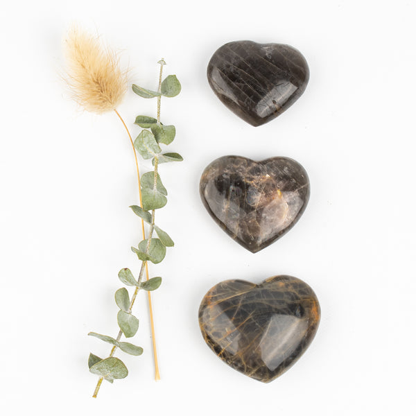 Black Moonstone Companion Hearts