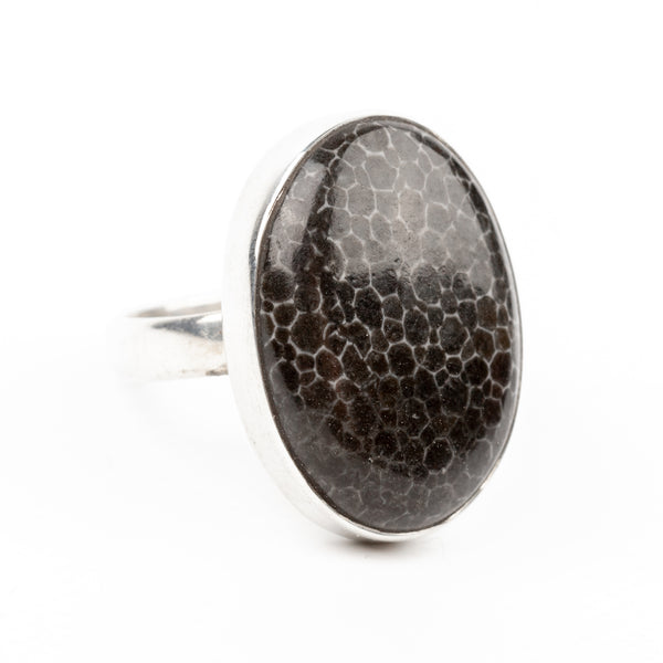 Fossilized Coral (Black) Ring Size 6