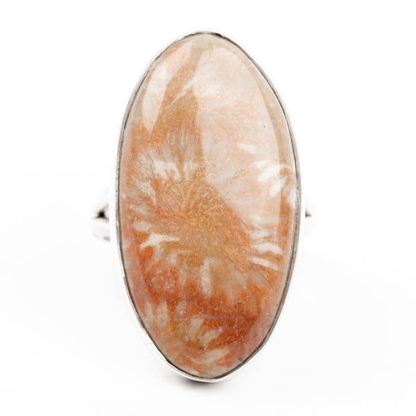 Fossilized Coral Ring Size 6.5 (Orange)