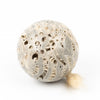 Fossilized Coral Clay Sphere #3