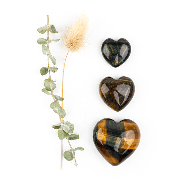 Mixed Tiger Eye Companion Hearts