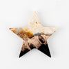 Petrified Palm Root Star