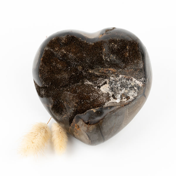 Dragon Egg Septarian Heart #3