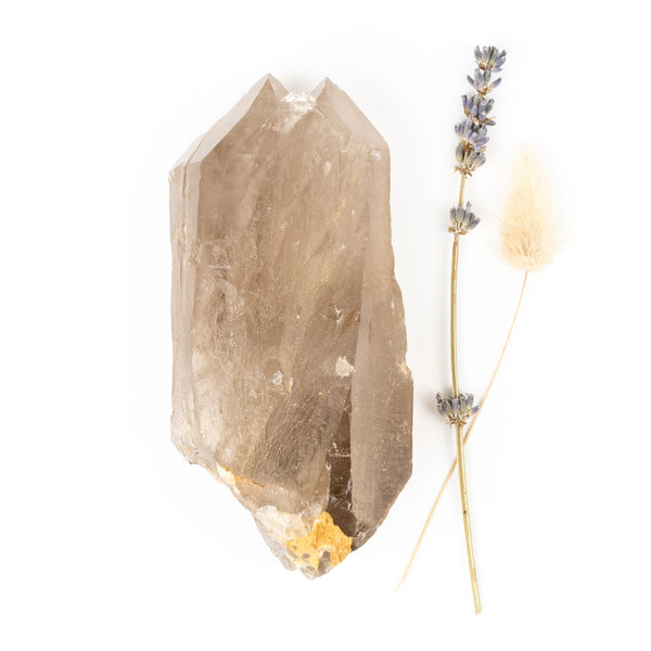 Lemurian Smoky Quartz Point #1