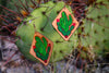 Image of Handmade Cactus Leather Earrings