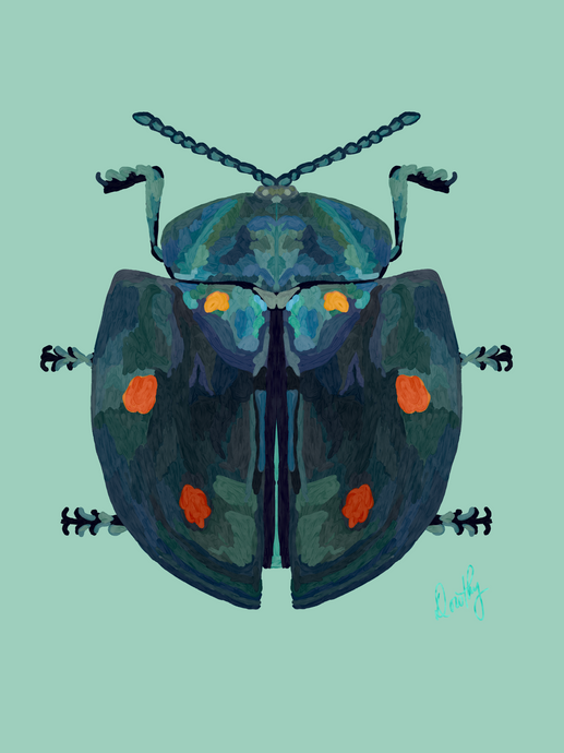 Beetle 4 Wall Art