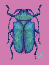 Beetle 5 Wall Art