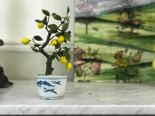Lemon Tree Sculpture - Dorothy Art