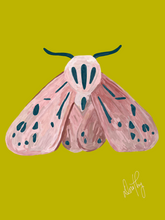 Moth 5 Wall Art
