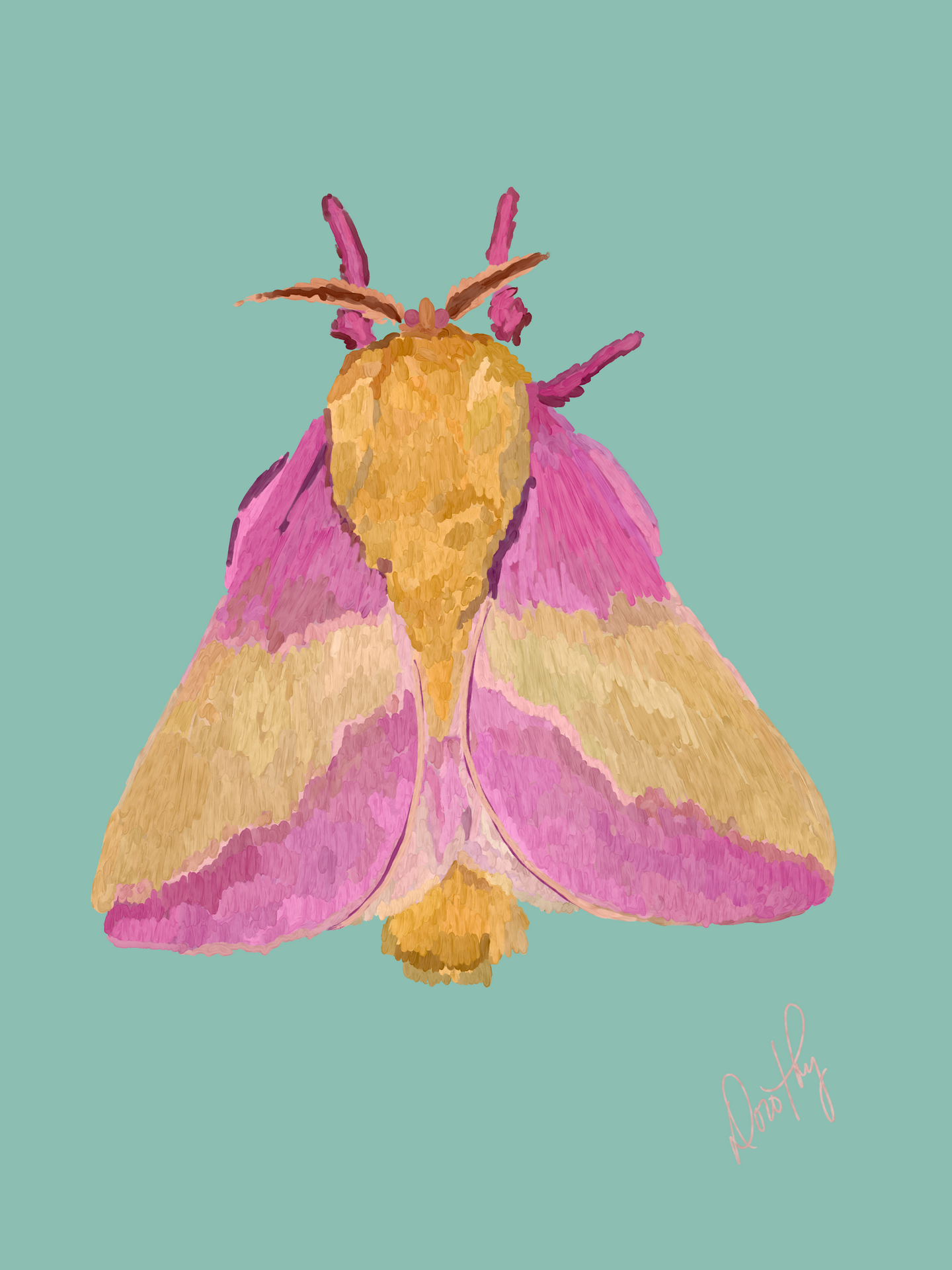 Moth 6 Wall Art