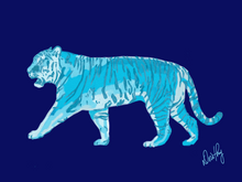Tiger in Blue Wall Art