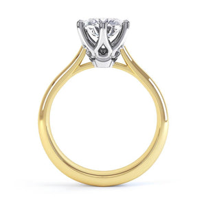 Harmony Moissanite 18k Two Tone Gold Solitaire