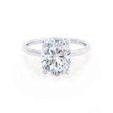 PARIS - Elongated Cushion Cut Forever One Moissanite & Diamond 950 Platinum Hidden Halo