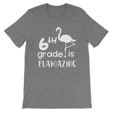 6th Grade Is Flamazing