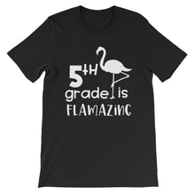 5th Grade Is Flamazing