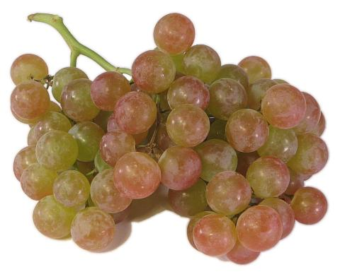 Muscat Grapes Basket