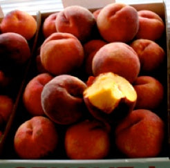 Waterloo - Full Box (25lbs) - Peaches