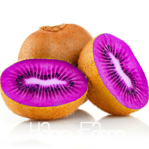 100pcs Beautiful Kiwi Bonsai Seeds