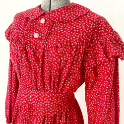 Vintage 1970s Red Rose Print Pioneer Type Dress