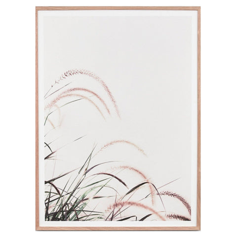 Blush Grass Breeze framed print by Middle Of Nowhere