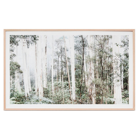Bush Land framed print by Warranbrooke