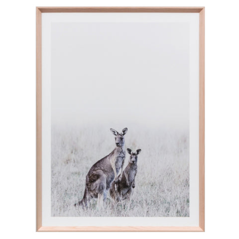 Misty Morning Framed Print - Warranbrooke kangaroos