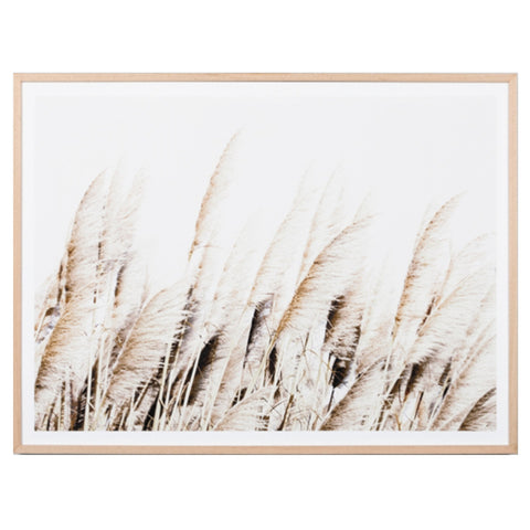 Pampas Breeze Framed Print - Middle of Nowhere (Warranbrooke)