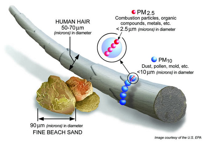 PM2.5 Activated Carbon Filters - 10 Pieces - Sapo All Natural