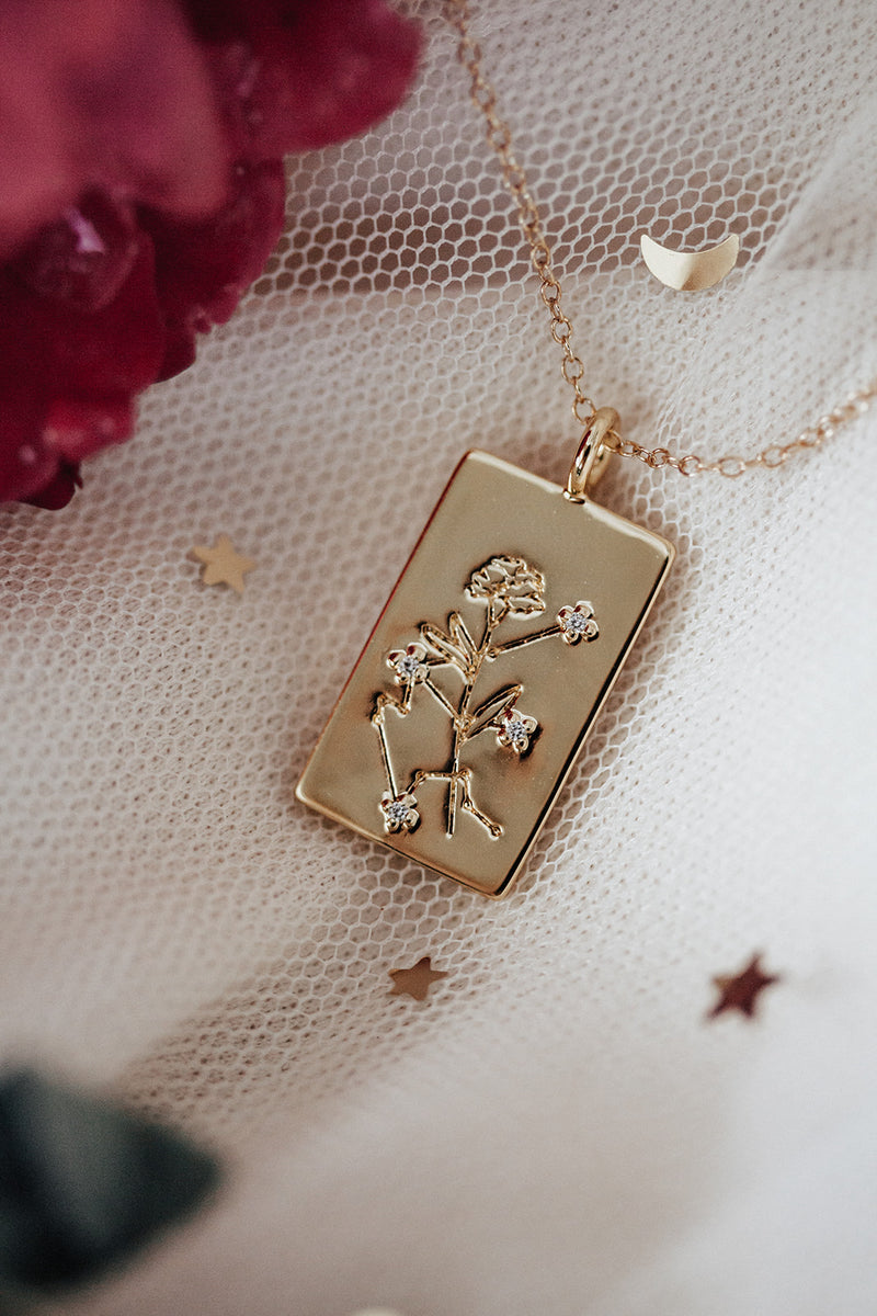 Birth Flower Zodiac Necklace- Aquarius Carnation- Jan 21-31