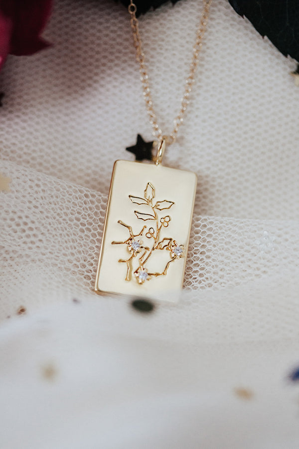 Birth Flower Zodiac Necklace- Sagittarius Holly - Dec 1-21