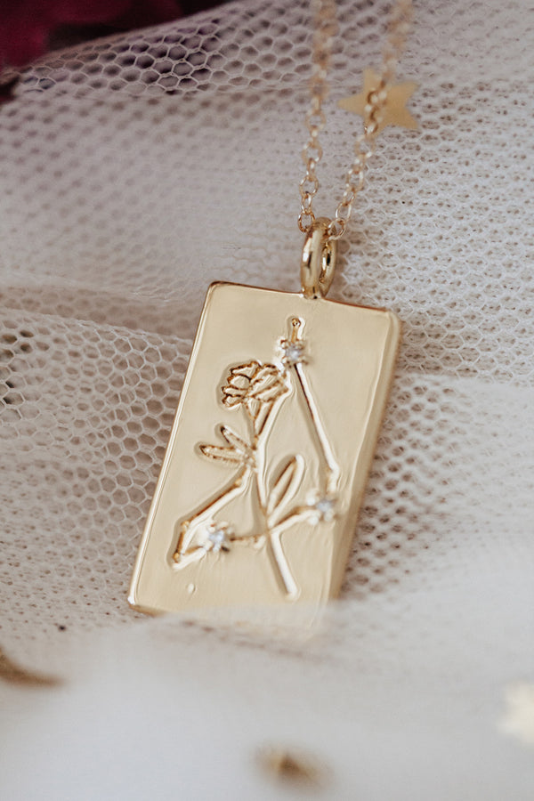 Birth Flower Zodiac Necklace- Capricorn Carnation- Jan 1-20