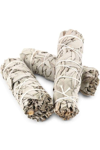 White Sage Smudge Stick Medium - Trickstar & CoAUS CrystalsAccessories
