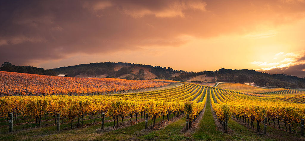 The Top Winery Accommodations in Australia