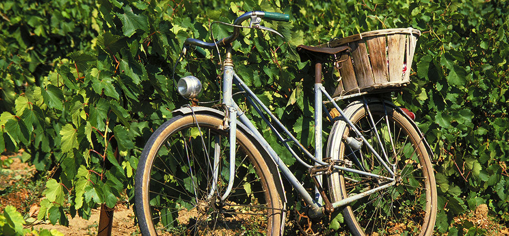 Explore the Wineries of the World by Bike Tour Part 2
