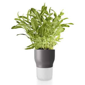 Self-Watering Flowerpot 11cm Grey