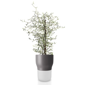 Self-Watering Flowerpot 13cm Grey