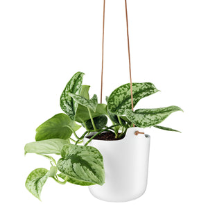 Self-Watering Flowerpot Hanging 15cm White