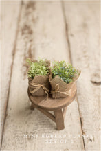 Foliage-Accent Pieces