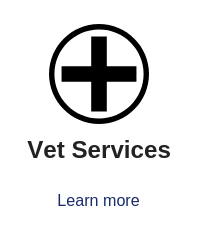 Veterinary services for your pet