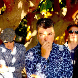 The Blow Monkeys and Brass  17 July  7.30pm