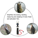 Portable Fish Grip with Scale Max Drag 15kg Stainless Steel Lip Grip Fish Control Fishing Grabber Gripper 245mm 209g Tackle
