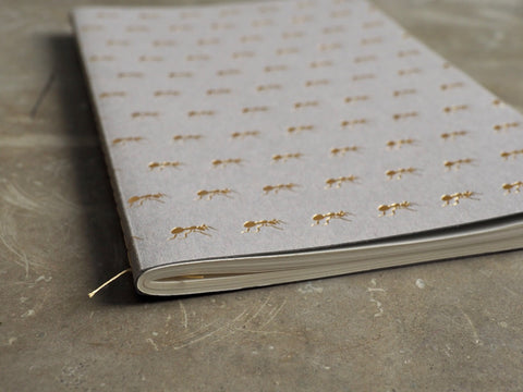 TURF Ant Notebook