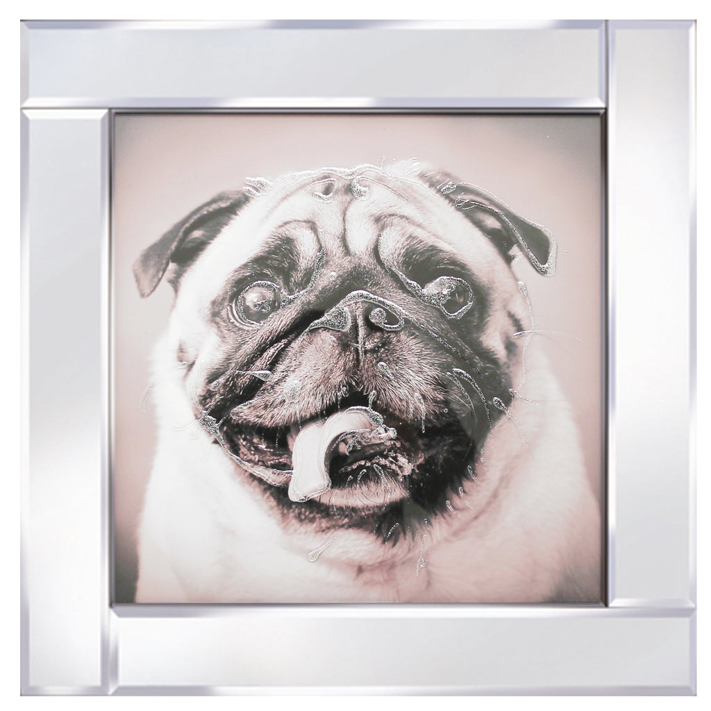Pug Dog on Mirror M103